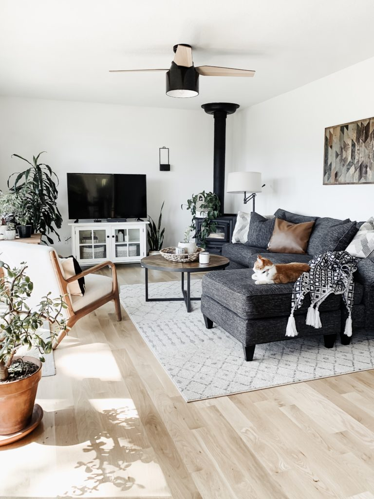 6 Neutral Area Rugs That Are Affordable And Pretty Allisa